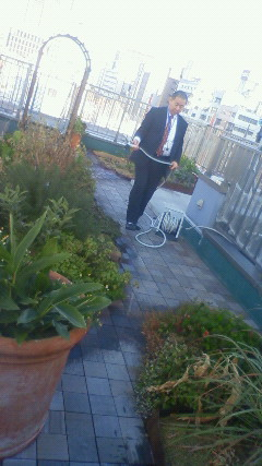 屋上菜園1445201201180942001.jpg
